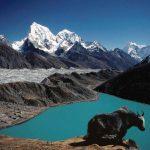 Everest Gokyo Ri Trekking